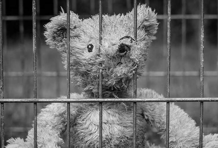 teddy-bear-bars-deprived-liberty-2711675-795x530_694x472_crop_and_resize_to_fit_478b24840a