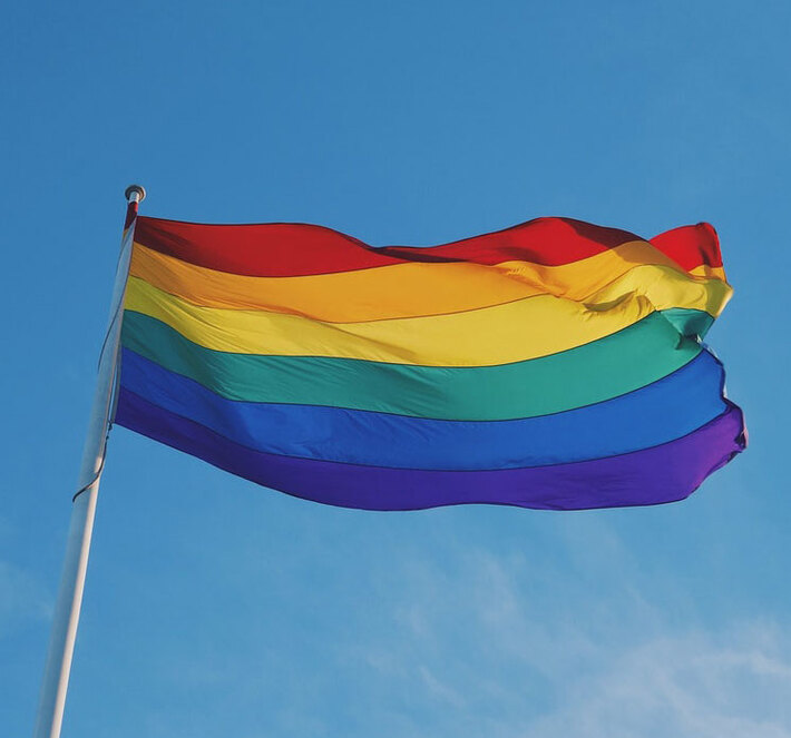 pride-flag-1521760180271-19d65a14d9dc_746x747_710x663_crop_and_resize_to_fit_478b24840a