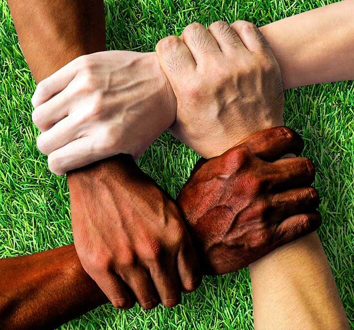 diversity-together-1917895-1080x720_710x663_crop_and_resize_to_fit_478b24840a